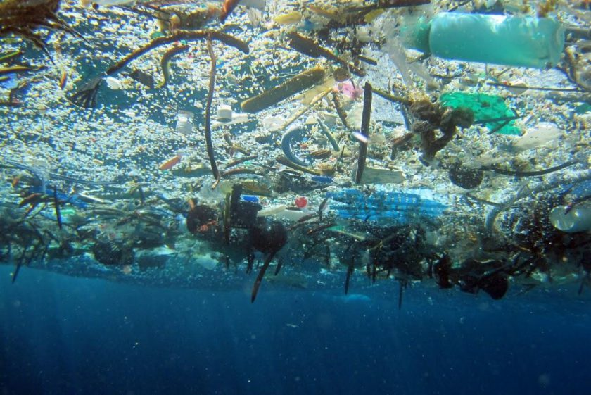 More and more plastic in the oceans
